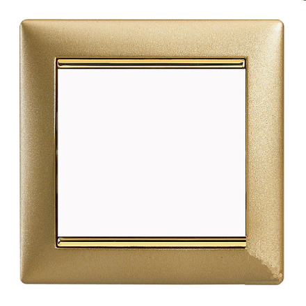 frame satin gold